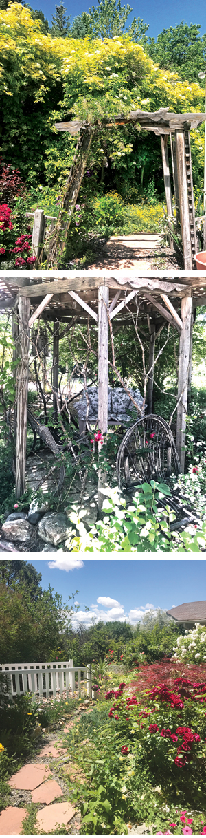 Shade and sun and plenty of tranquil places to enjoy both. In Melanie' Kline's Garden, Montrose CO.