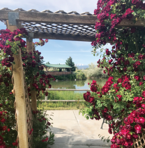 Rose arbor leads to walkway to Spring Creek Chalet's gardens and pond.