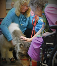 Goldie, comforting an assisted living patient. With MMHTP owner, Manette Steele.