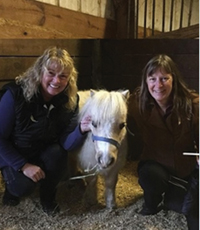 MMHTP Mini horse Glory with Manette Steele.