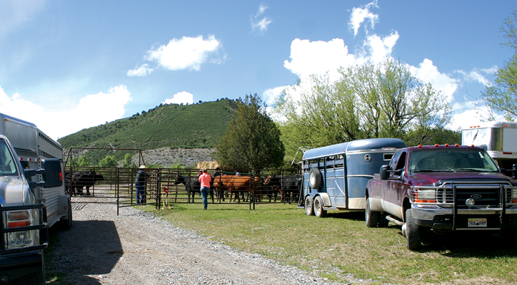 Unloading horses to help with fall roundup. ©Kathryn R. Burke.